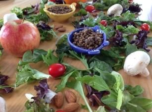 Day 3 Salad Spread